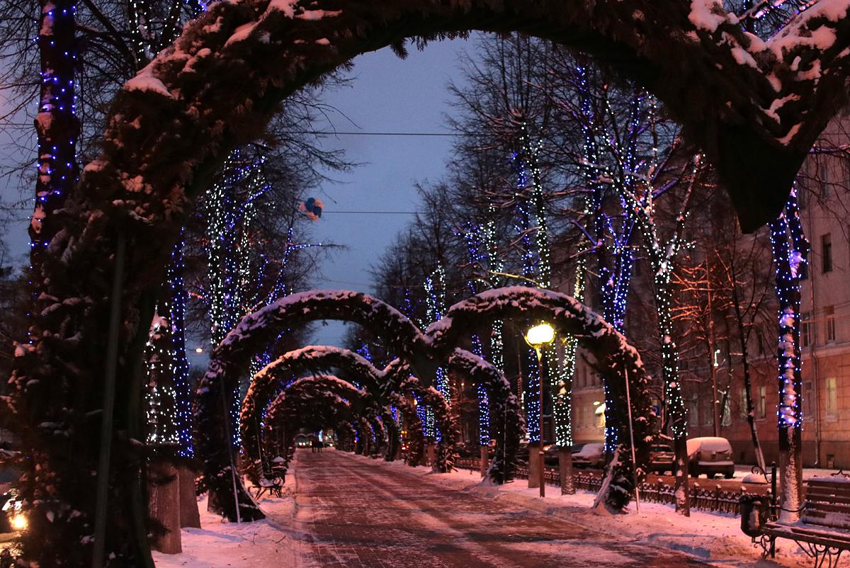На улицах Ярославля начали включать новогодние гирлянды