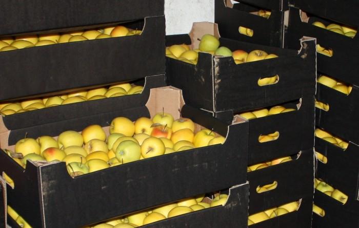 ФОТО: В Ярославле уничтожили десять тонн санкционных овощей и фруктов