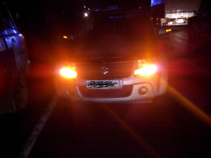 Водитель скорой помощи погиб в ДТП с лосем на трассе в Ярославской области