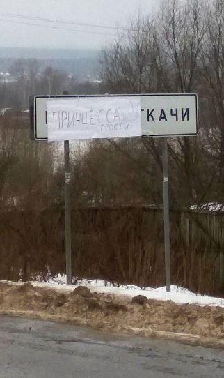 Под Ярославлем появился новый дорожный знак «Принцесса прости»