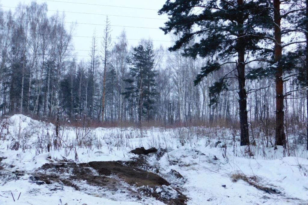 Ярославская область занимает 12 место в России по количеству ликвидированных свалок