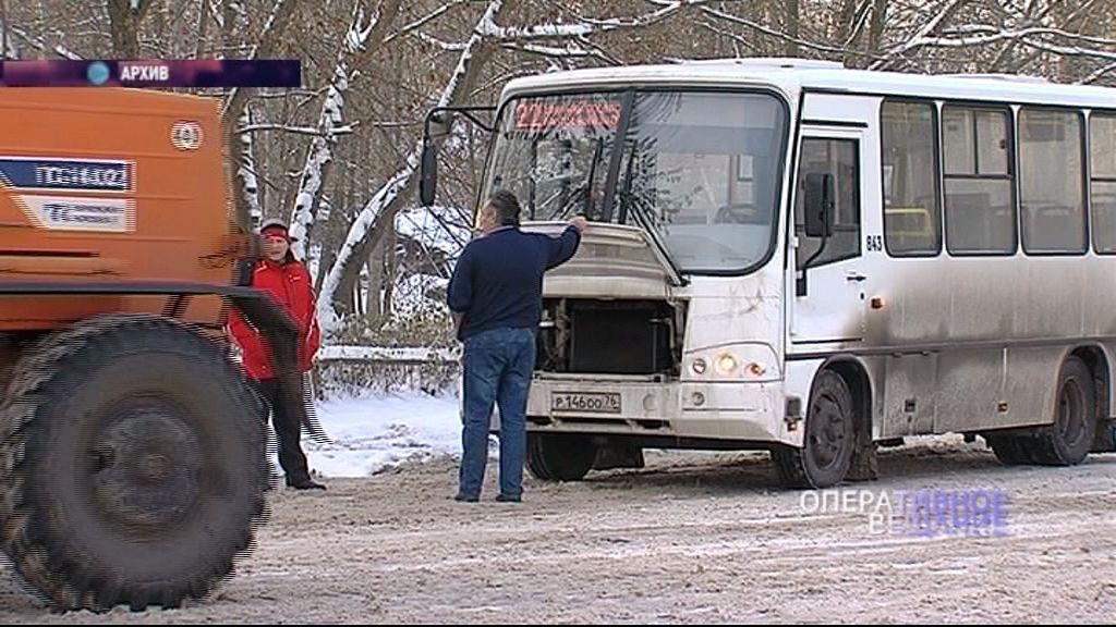 Жительницу Ярославля осудили за ложный донос