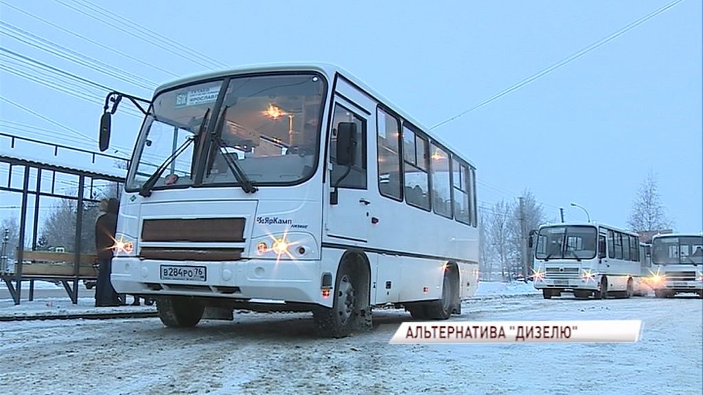 На междугородние маршруты в Ярославской области вышли новые автобусы