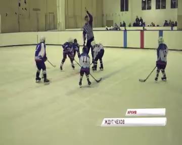 Юные хоккеисты из Чехии отправляются в турне по нашей области
