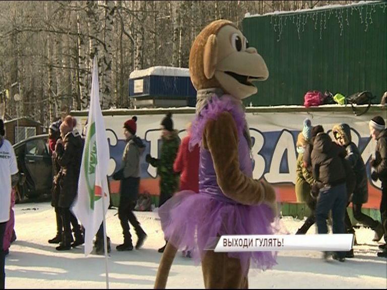Ярославцы вышли на праздник в поддержку благоустройства парка «Нефтяник»