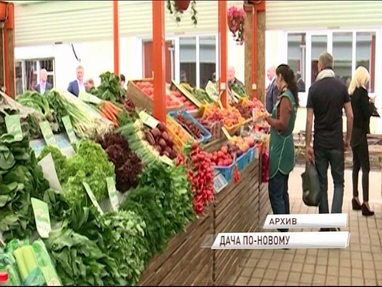 Больше четырех с половиной миллионов рублей направят на поддержку садоводов