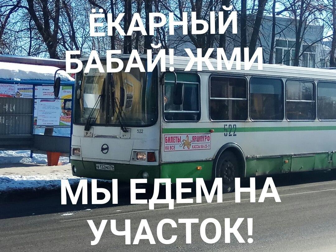Десятки мемов появились в Сети во время выборов президента РФ