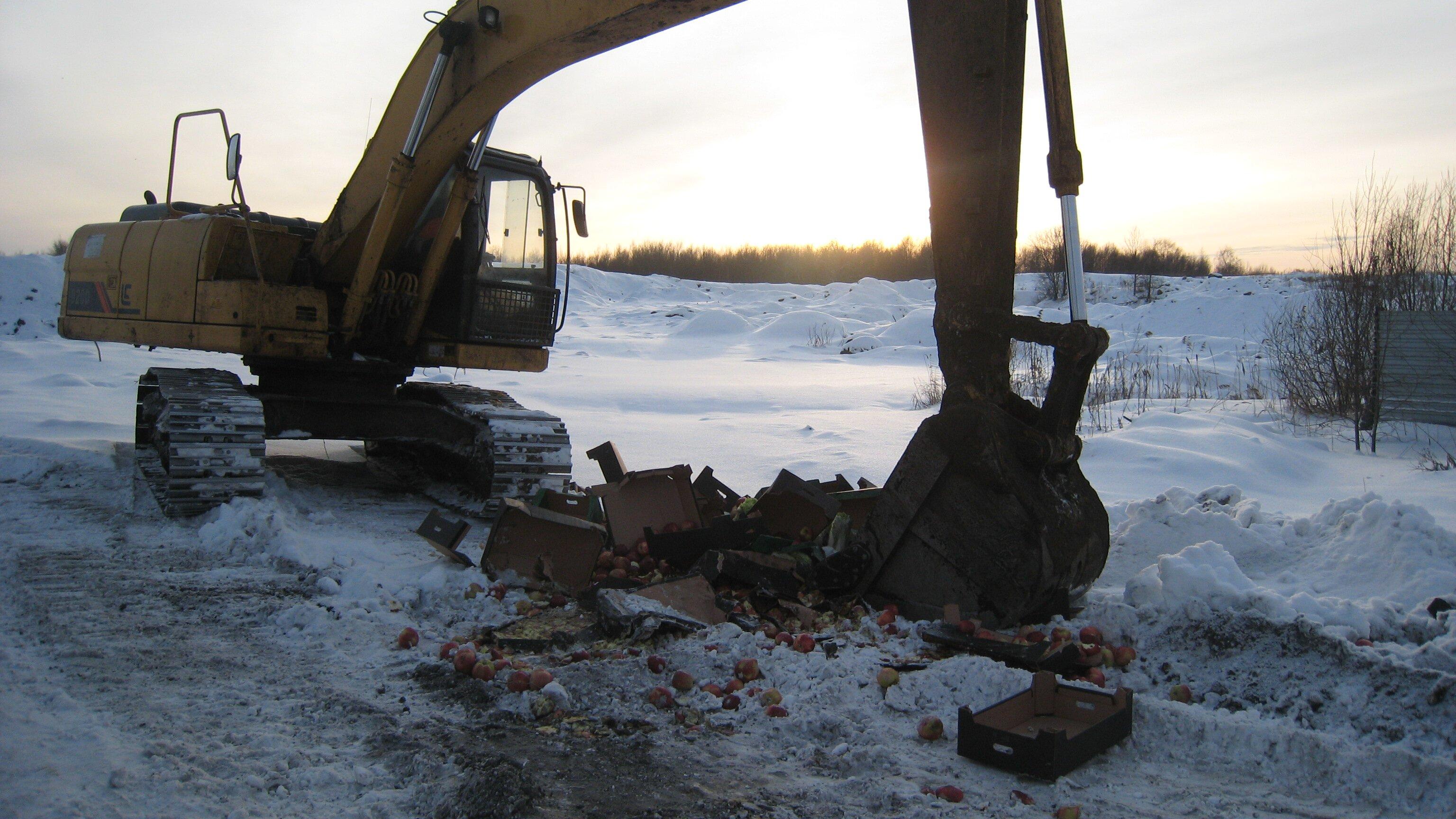 Больше тонны санкционных овощей и фруктов было уничтожено в Ярославской области с начала года