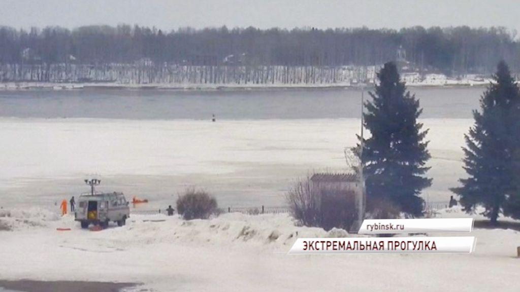 В Рыбинске мужчина провалился под лед вместе с собакой