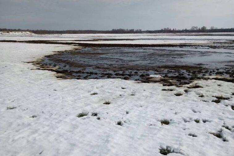 Правительство Ярославской области: Качество питьевой воды в регионе находится на постоянном и жестком контроле