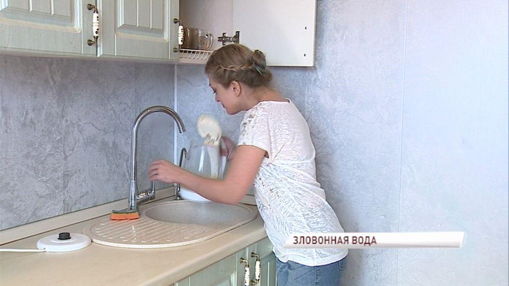 Из кранов жителей Ростова потекла зловонная вода: как решили проблему