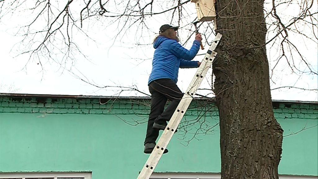 В Рыбинске Федор Конюхов развесил скворечники и поселил в Волжском парке белок