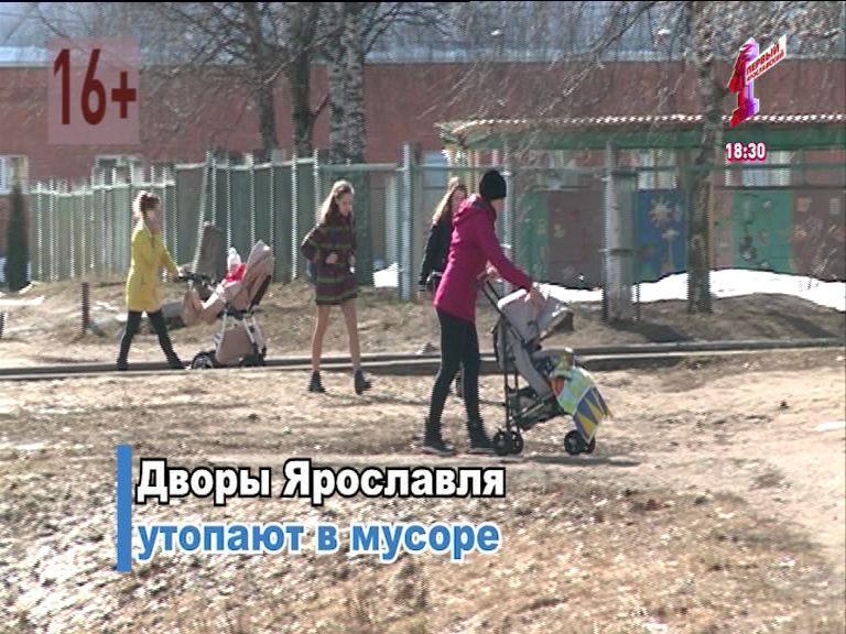 Неумытый Ярославль: сколько мусора показалось из-под снега после и хватает ли урн для нового