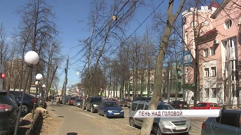 ФОТО: Над головами ярославцев уже третью неделю висит пень