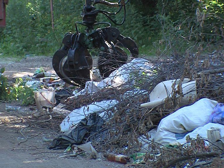 Эколог: ярославцы должны сознательнее подходить к вопросу утилизации мусора