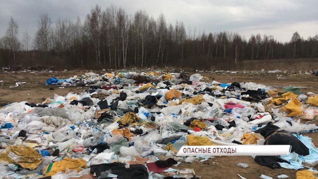 В Заволжском районе нашли несанкционированную свалку из медотходов и шкур животных