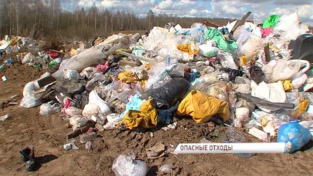 В Заволжском районе появилась очередная незаконная свалка: жители озабочены наличием в ней медицинских отходов