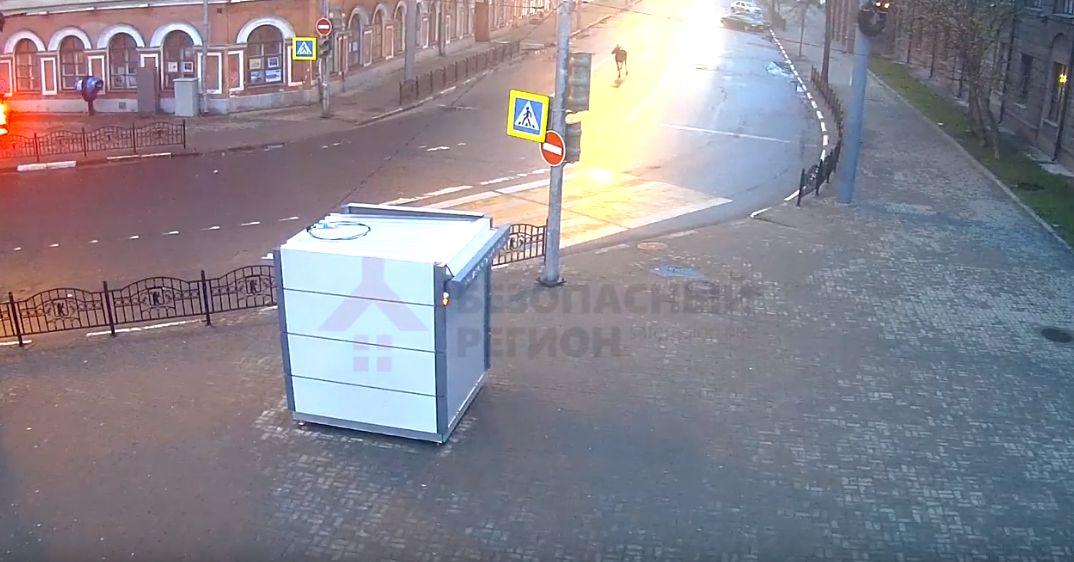 ВИДЕО: Камеры наружного наблюдения запечатлели утренний променад лося по центру Ярославля