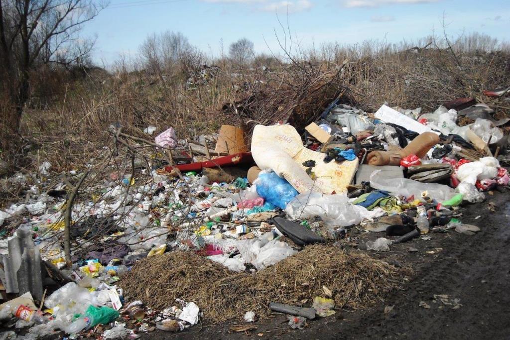 В Тутаеве поймали управдом за сбросом мусора на несанкционированной свалке