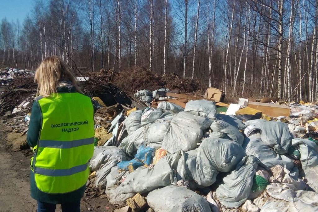 Жители региона могут стать инспекторами по экологии: куда подавать заявление