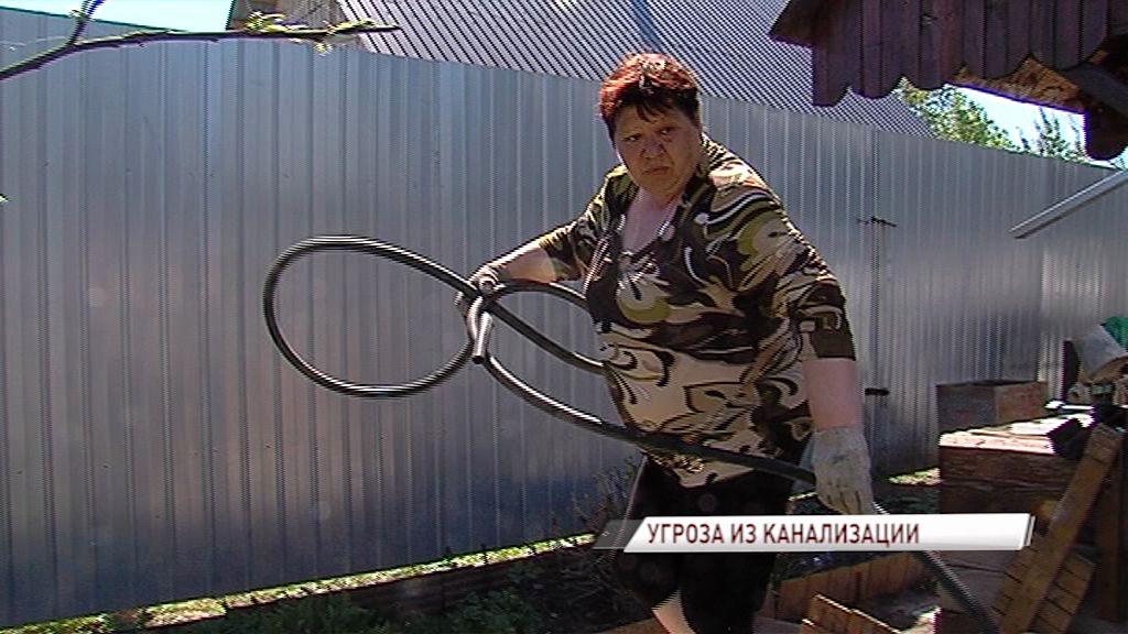 На огород пенсионерки из Туношны хлынули фекалии: кто виноват и кому решать проблему