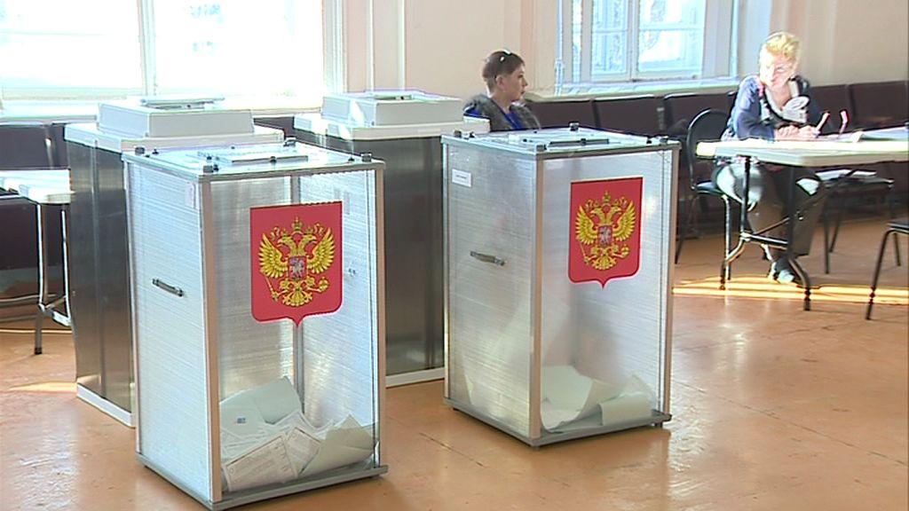 Проголосовать за участника предварительного голосования можно будет в режиме онлайн