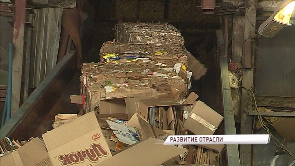 В регионе разработана программа по переработке отходов