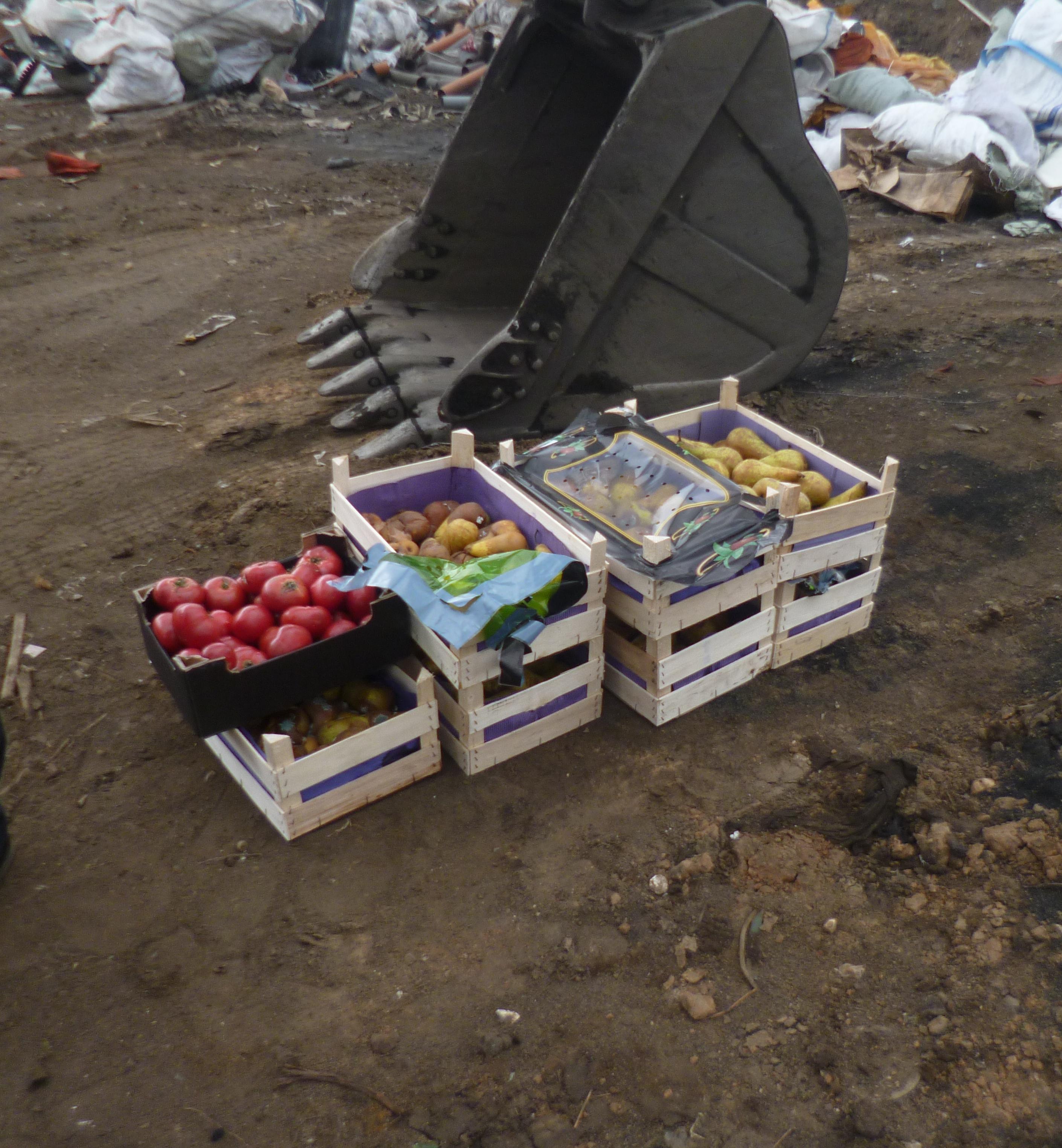В «Скоково» раздавили санкционные груши и томаты