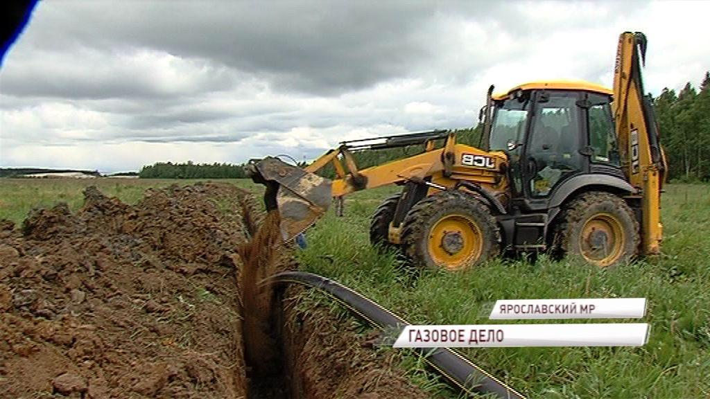 В этом году закончится строительство газопровода Туношна – Воробино, который ждут жители двухсот домовладений