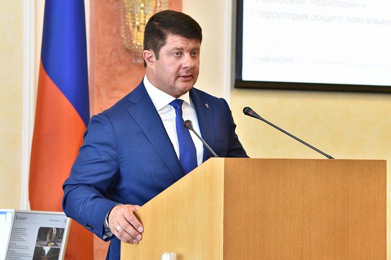 Война с одуванчиками, правила для собачников и дефицит бюджета: Владимир Слепцов отчитался о работе за 2017 год