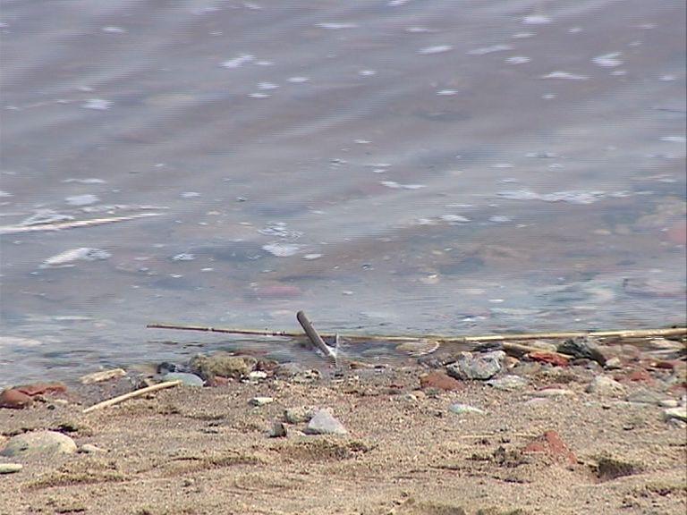 В Ярославской области ветер перевернул лодку с рыбаками