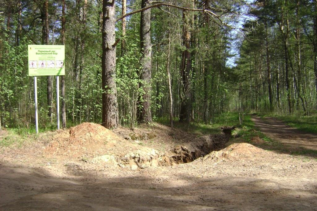 Автовладельцев оштрафовали за проезд по особо охраняемой природной территории