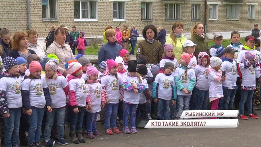 На страже природы в Ярославской области будут стоять малыши-эколята
