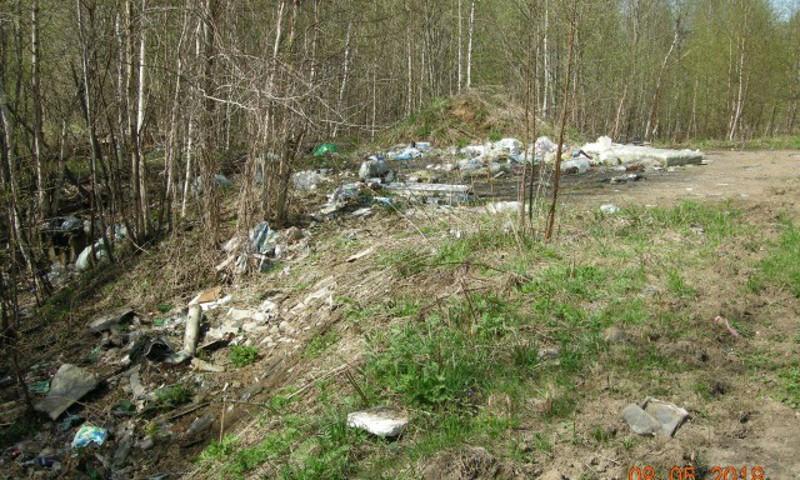 В Тутаевском районе ликвидировали три несанкционированные свалки