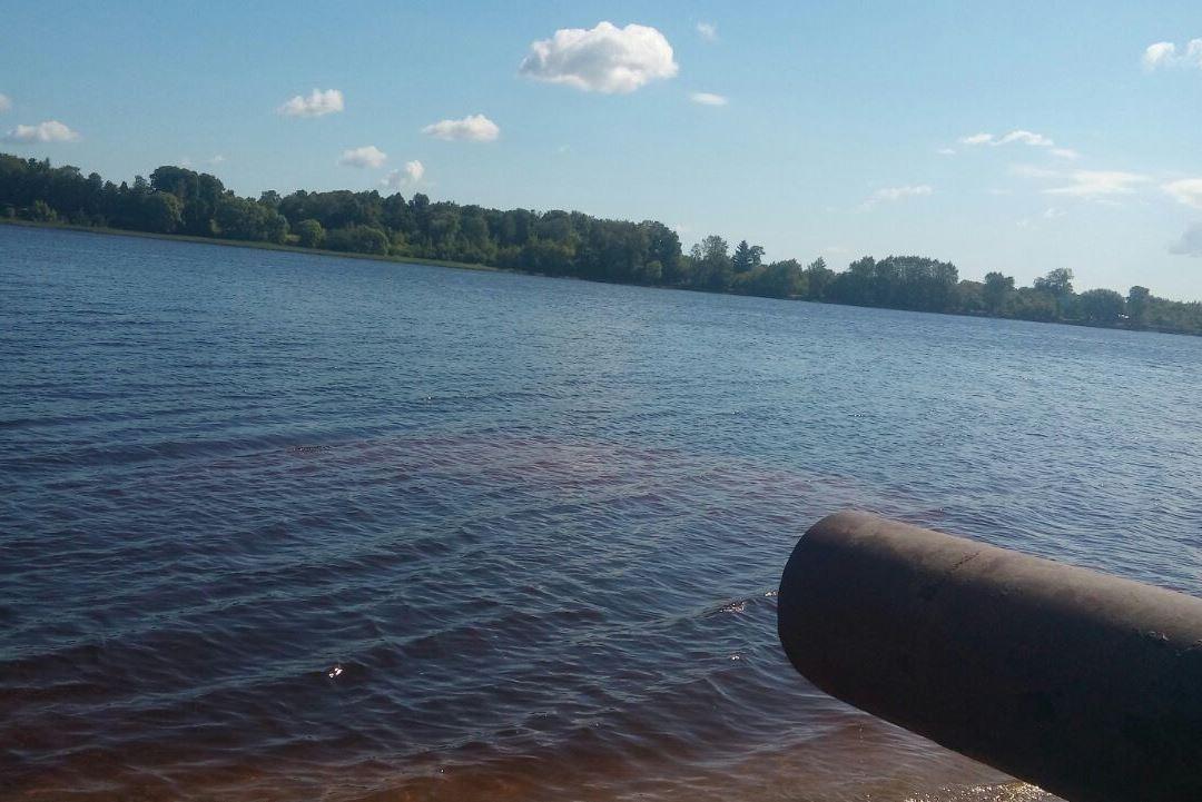 Исследование: опасных загрязнений Волги в районе Полушкиной рощи не обнаружено