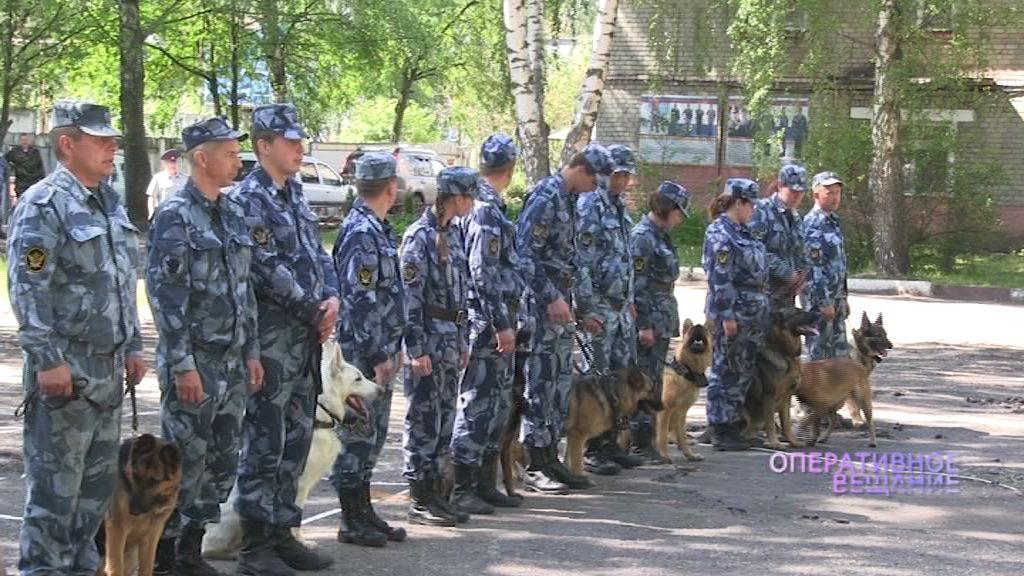 В Ярославле прошли соревнования среди кинологов УФСИН