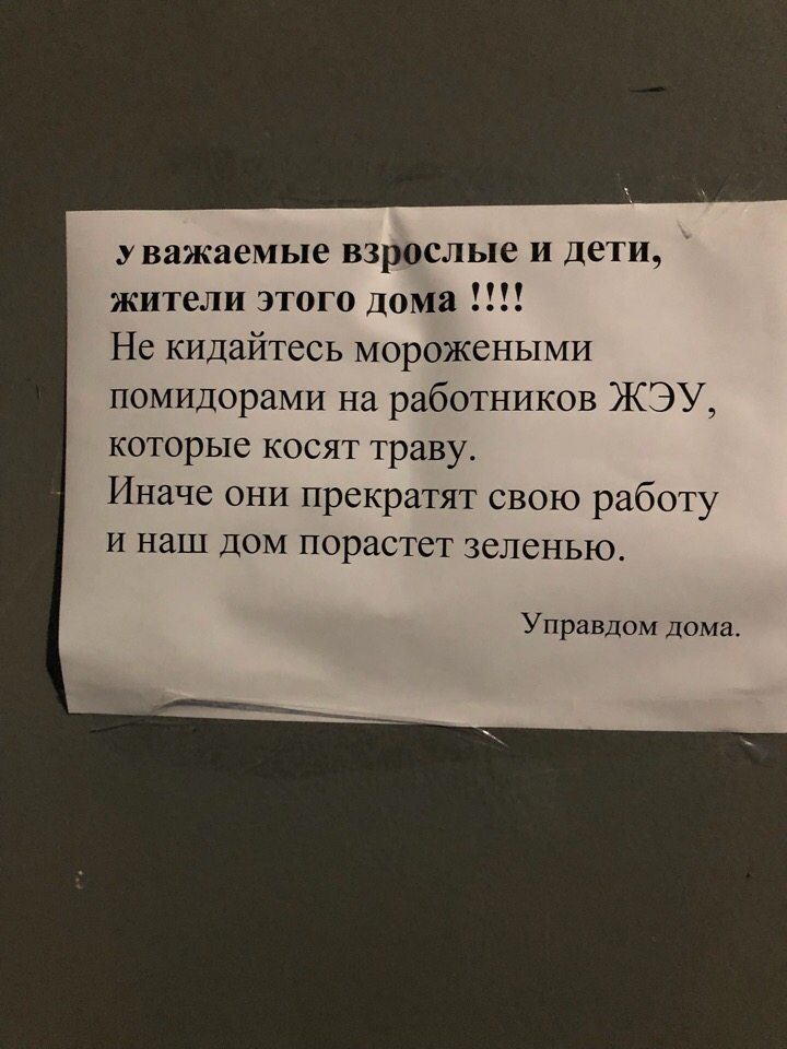 Управдом попросил жителей дома во Фрунзенском районе не кидаться морожеными помидорами в работников ЖЭУ