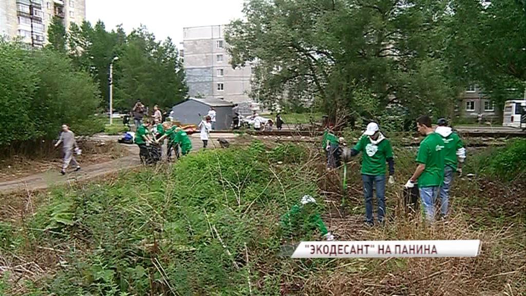 Волонтеры «Экодесанта» помогли убрать территорию жителям улицы Панина
