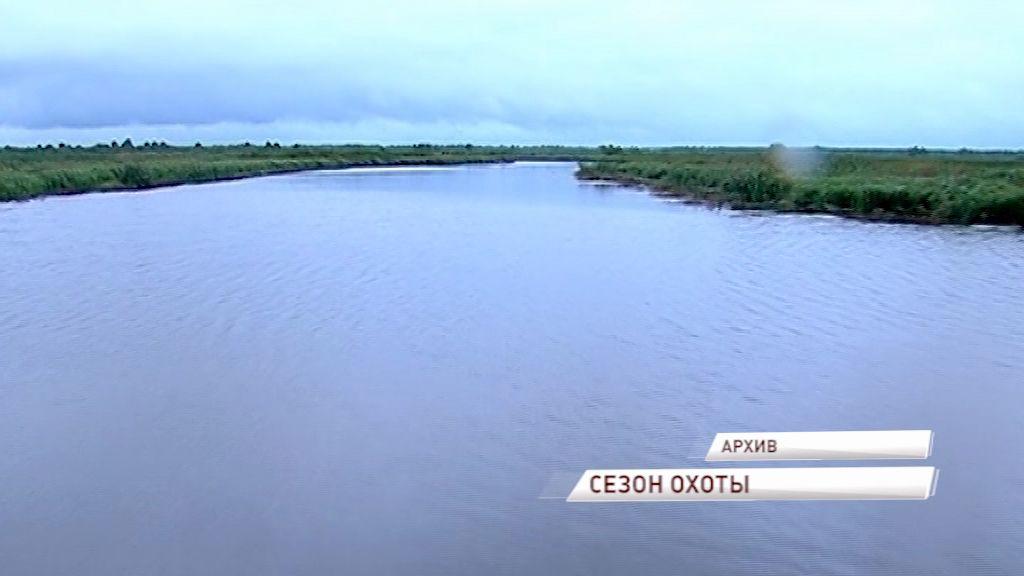 Разрешения на охоту в Ярославской области получили около 15 тысяч человек