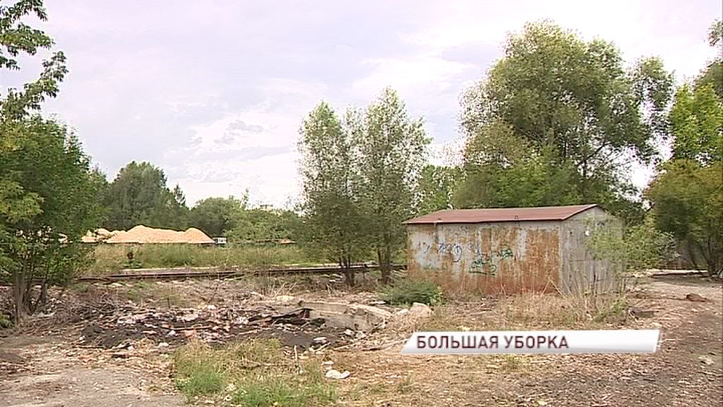 «Экодесант» призывает жителей выйти на уборку улицы Панина