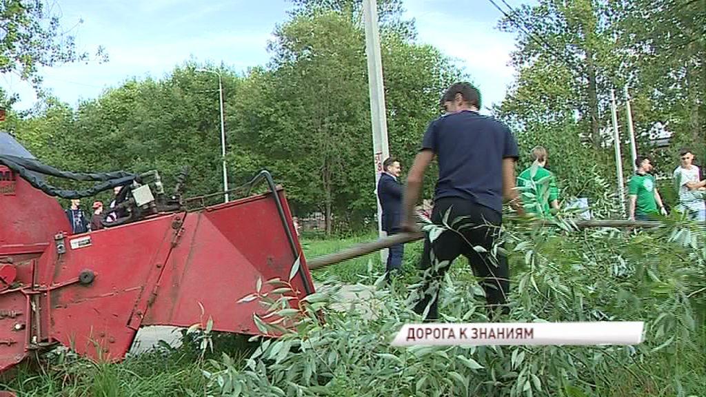 «Экодесант» навел порядок на опасной дороге к школе в Дзержинском районе