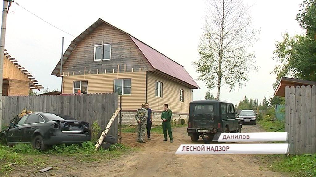 В Ярославской области проверяют участки на целевое использование древесины