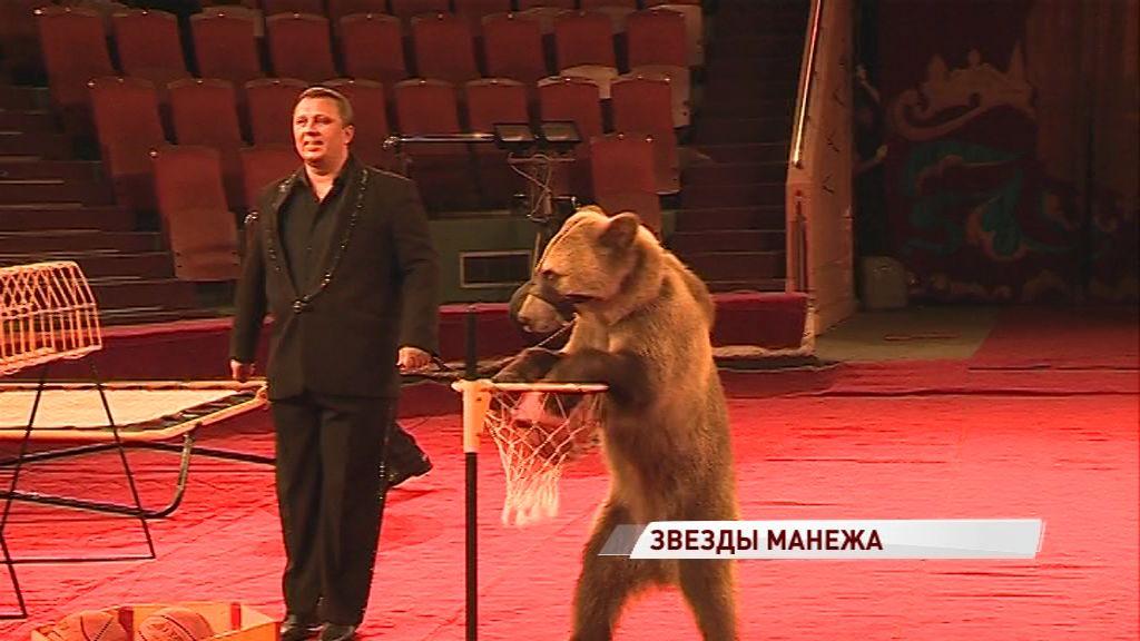 Ярославский цирк снова готов удивлять: новую программу подготовили известные цирковые семьи