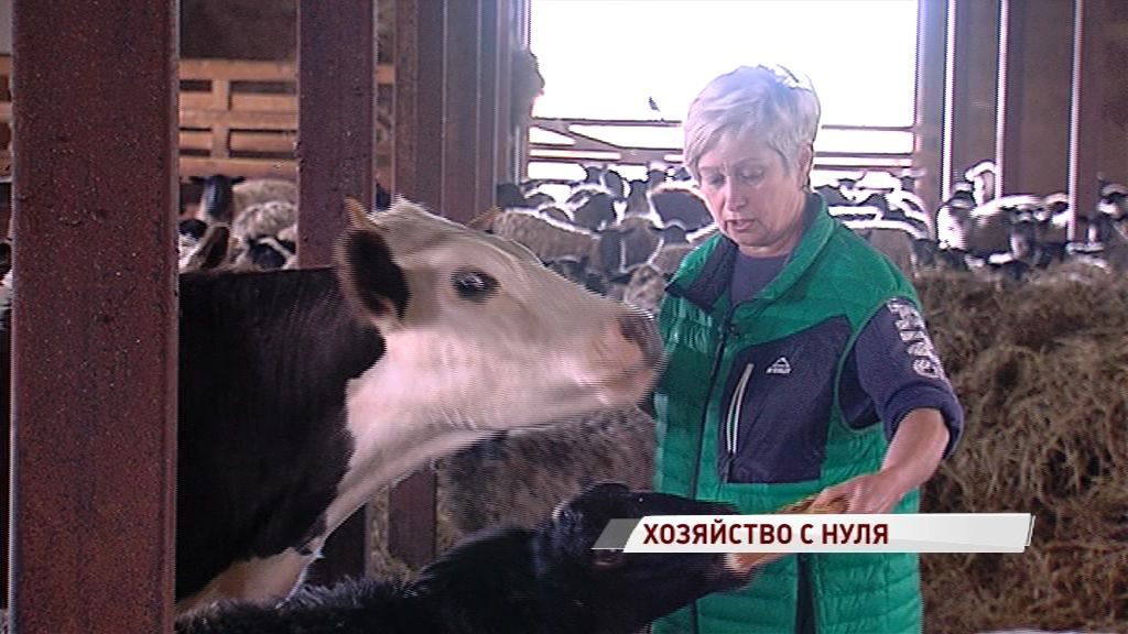 Вместо руин – преуспевающая ферма: как это удалось семье из Даниловского района