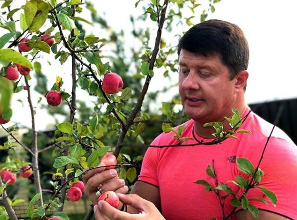 Мэр Ярославля показал свои яблочки