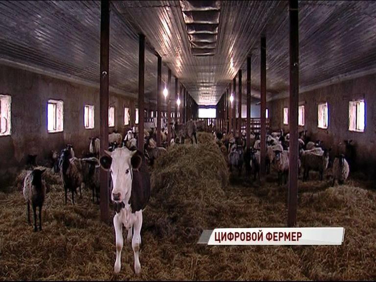 Ярославцы на выставке «Золотая осень» представят проект «Цифровой фермер»