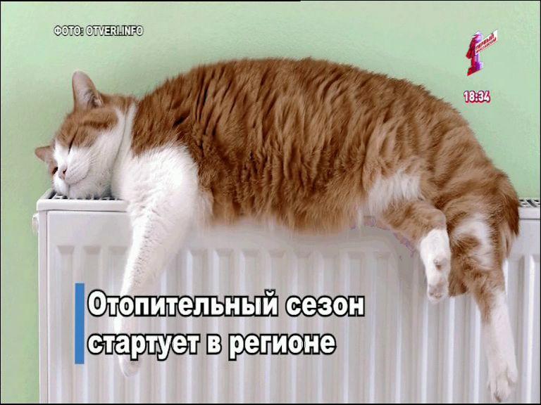 На улице холодает, в домах – теплеет: в Ярославской области стартует отопительный сезон