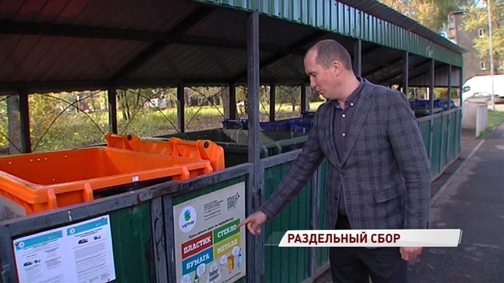 В Ярославской области стартовала программа раздельного сбора мусора: куда выбрасывать полезные фракции