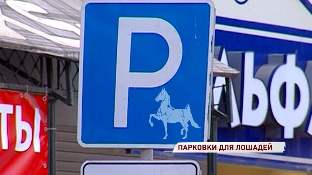 В Ярославле появятся места для парковки лошадей