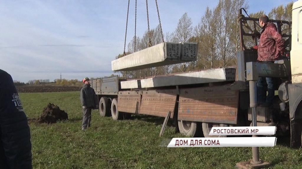 В Ростовском районе будут выращивать сома, начинается строительство производственного комплекса